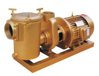 China swimming pool equipment copper pump china copper pump brass pump for Copper electrodes for swimming pool