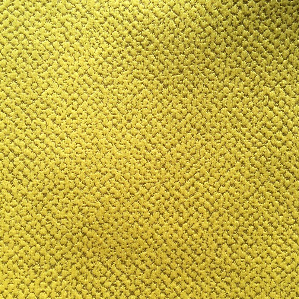 Embossed Velvet Sofa Fabric Furniture Fabric (dragon)