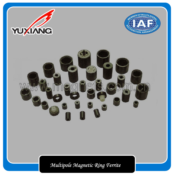 High Quality Radial-Oriented Multipole Magnetic Ring Ferrite