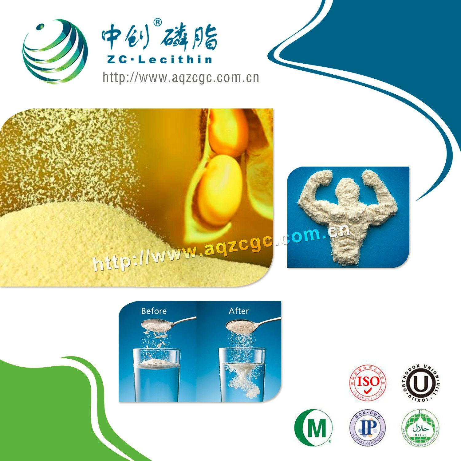 Soy Lecithin Pharmaceutical Grade