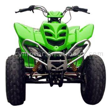 china 150cc 125cc 250cc yamaha raptor style atv with ce. Black Bedroom Furniture Sets. Home Design Ideas