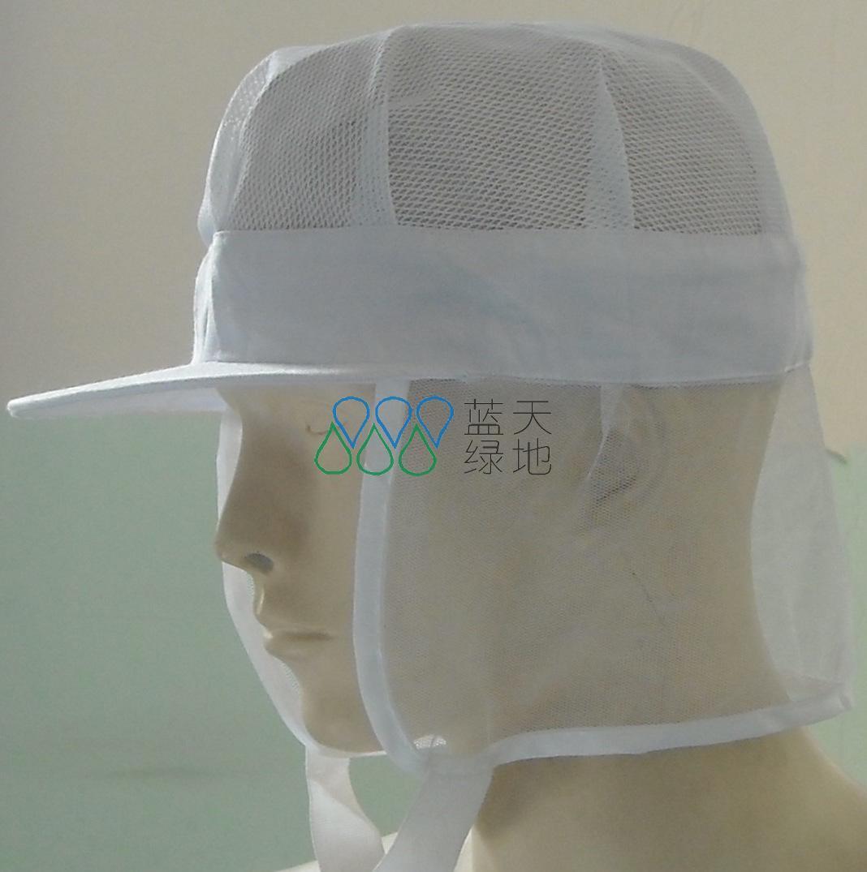 ESD Netting Cap (LTLD212)