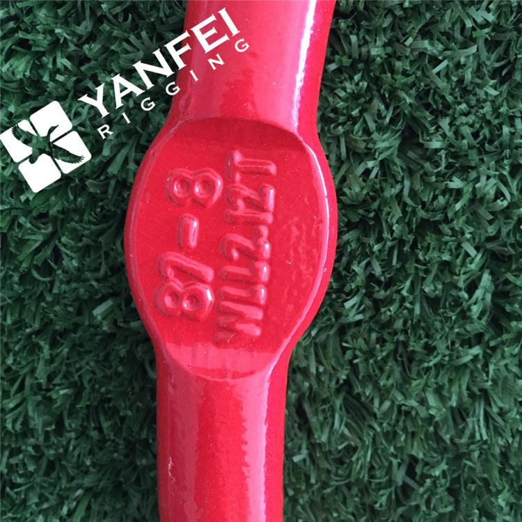 G80 320A/320c Eye Hoist Hook with Safety Latch