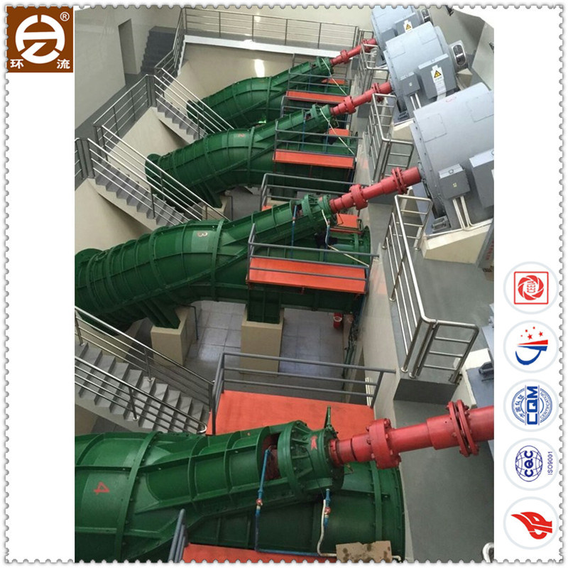 Inclined Type Axial Flow Electric Water Pump