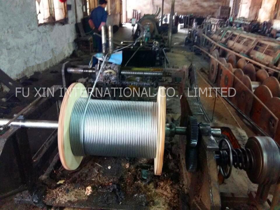 Ungalvanized and Galvanized Steel Wire Rope