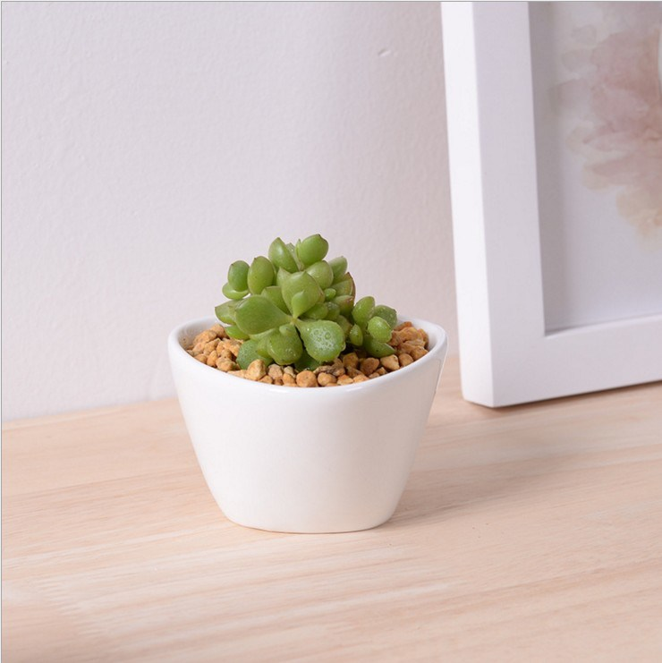 Mini Desktop Mini Ceramic Flowerpot