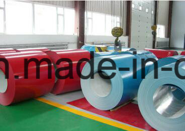 0.2-1.0mm/600-1250mm Prepainted Steel Coil/PPGI