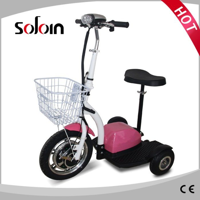 350W 36V 3 Wheel Foldable Electric Mobility Motorcycle (SZE350S-3)