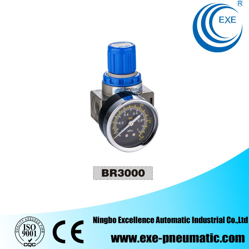 Ar/Br Series Air Filter Combination Br3000