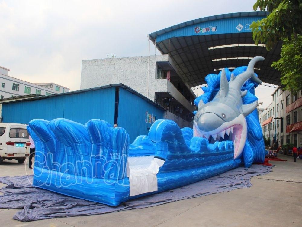 Giant Shark Inflatable Water Slide for Amusement Park (CHSL577)