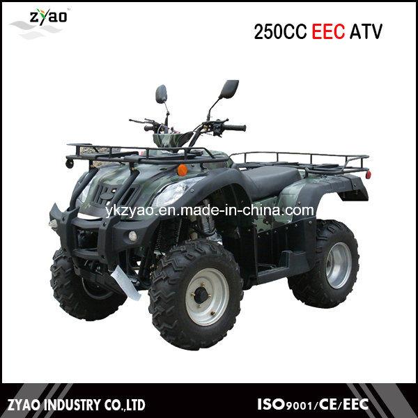 200cc UTV Air Cooled 250cc ATV Quad Bike Water Cooled Big Farm ATV