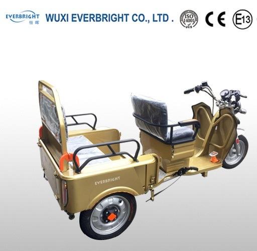 48V 500W EEC Passenger Electric Rickshaw Vehicle