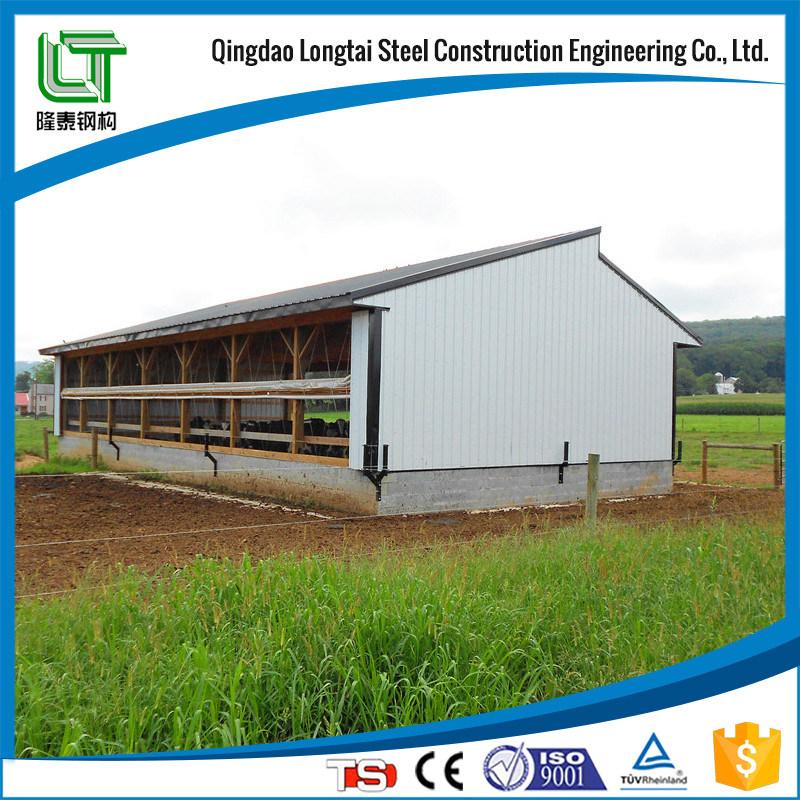 Steel Prefab Pigsty