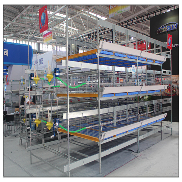 China Supplier Poultry Equipment Wholesale Bird Cages For