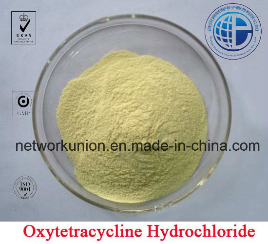 Oxytetracycline Hydrochloride (Oxytetracycline HCl) CAS: 2058-46-0 Veterinary Medicine