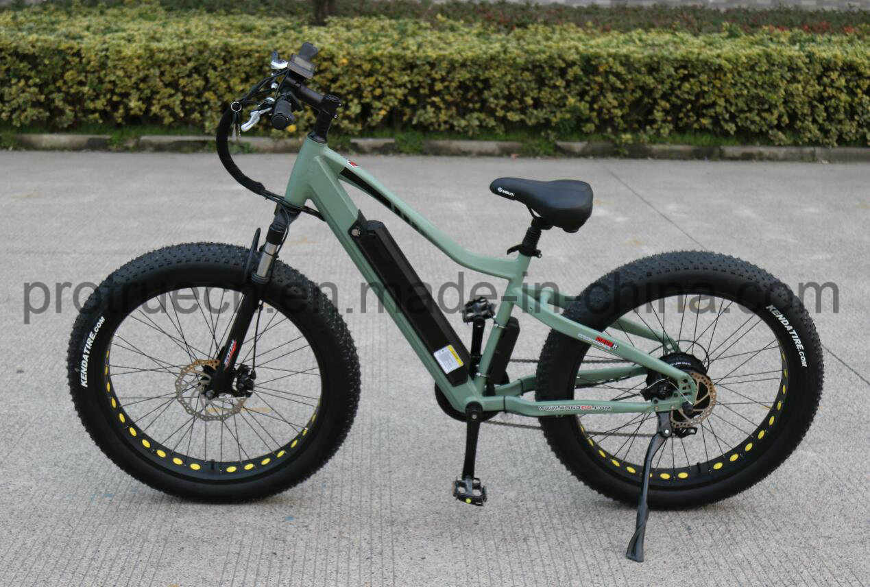 750W Mountain Electric Bicycle for Adults