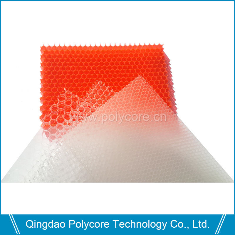 Plastic Honeycomb Series (honeycomb core, honeycomb panel)