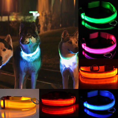 LED Flashing Dog Collar High Quality Customized Pet LED Collar