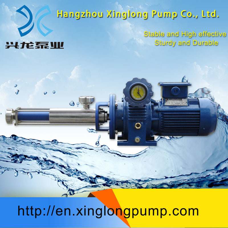 Xinglong Micro Metering Screw Pumps for Dosing Polymer, Glue, and Other Liquids