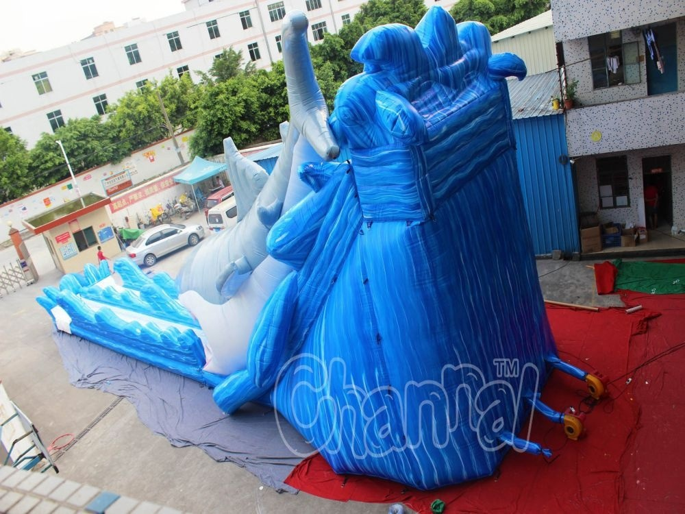 Giant Shark Inflatable Water Slide for Amusement Park (CHSL577)