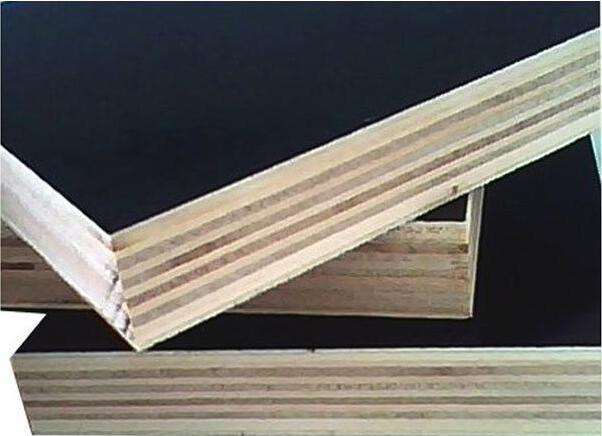 Film Faced Eucalyptus-Birch Combi Plywood for Construction