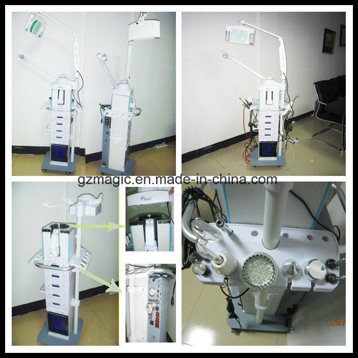 Multifunction 19 in 1 Facial Beauty Machine for Wrinkles