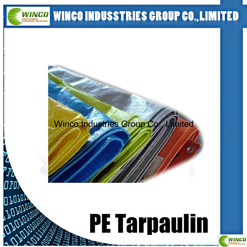 Laminated Tarpaulin Waterproof Fabric for Super Market, UV Stabilized PE Tarpaulin