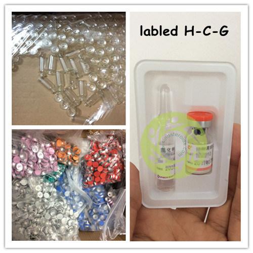 Peptide Human Chorionic Gonadotropin H-C-G for Pregnancy Test