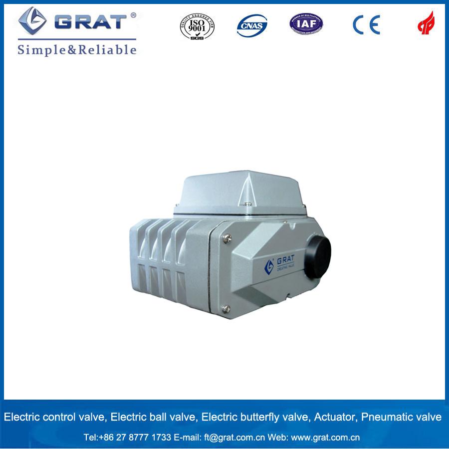 100nm Torque Electric Actuator
