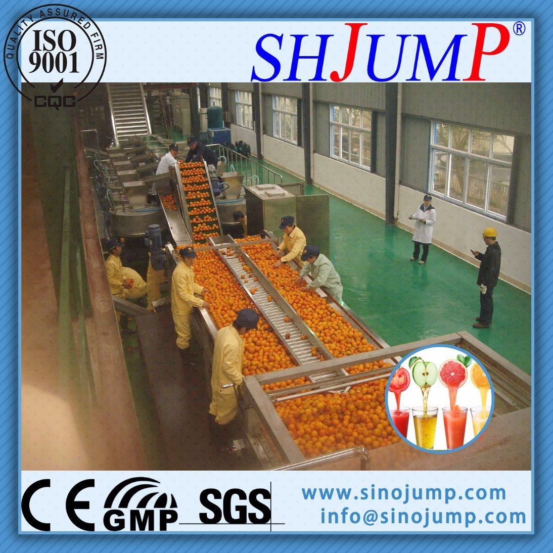 Orange Juice Production Line / Orange Juice Concentration Processing Machine