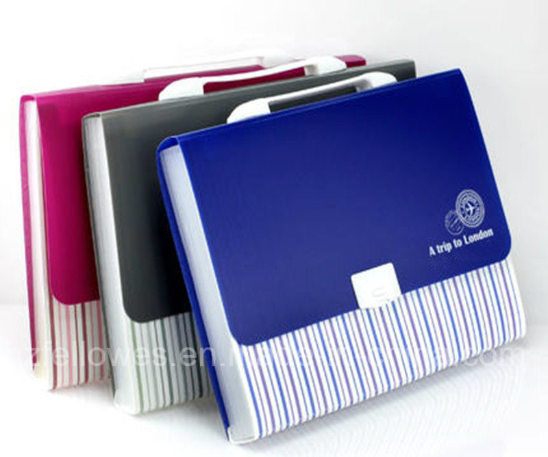 Two Color Print Surface Expanding File Folder