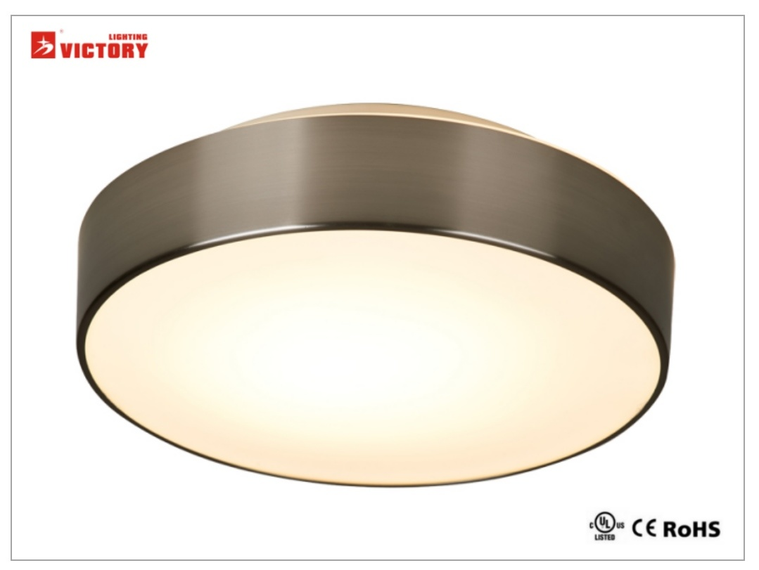 Newest Design Modern Glass LED Ceiling Lighting with Opal Glass