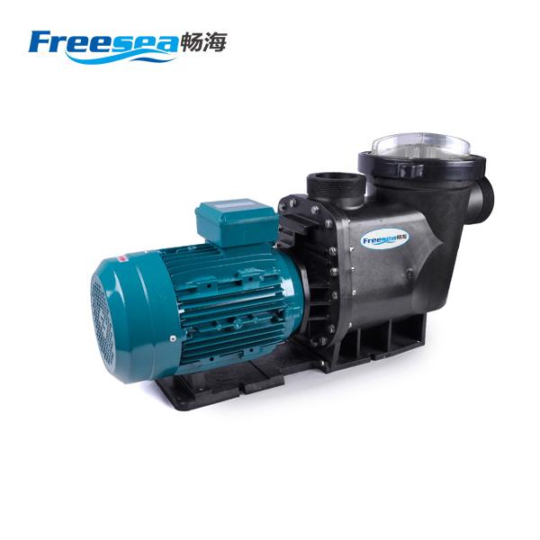 Copper Motor Pump for Swimming Pool