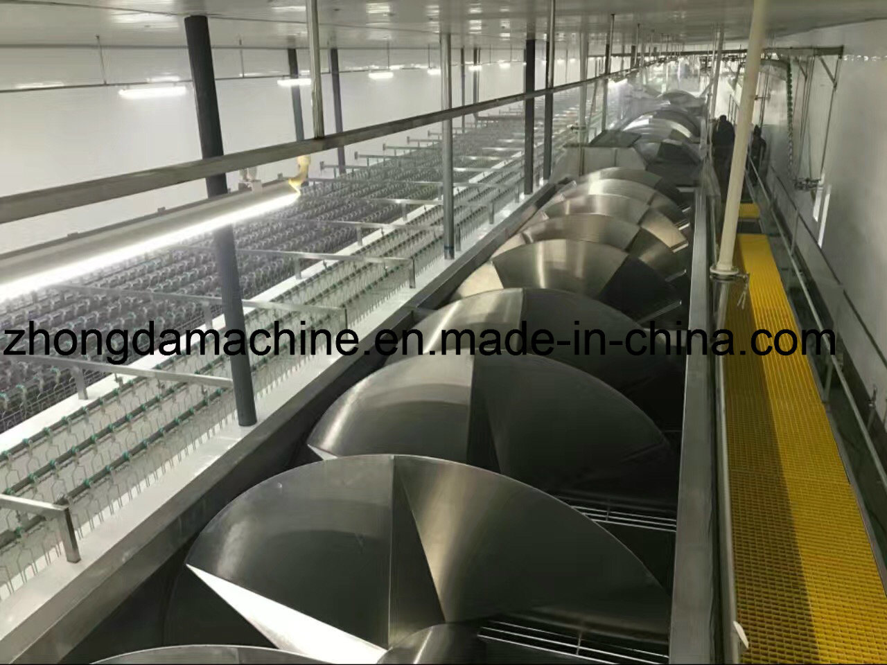 Full Chicken Slaughter Equipment in Middle East
