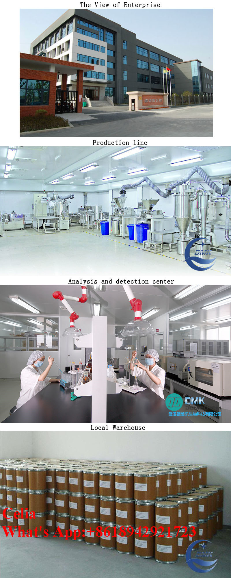 Chinese Manufacturer Provide Bkm120 Powder for The Pan-Pi3k Inhibition CAS: 944396-07-0