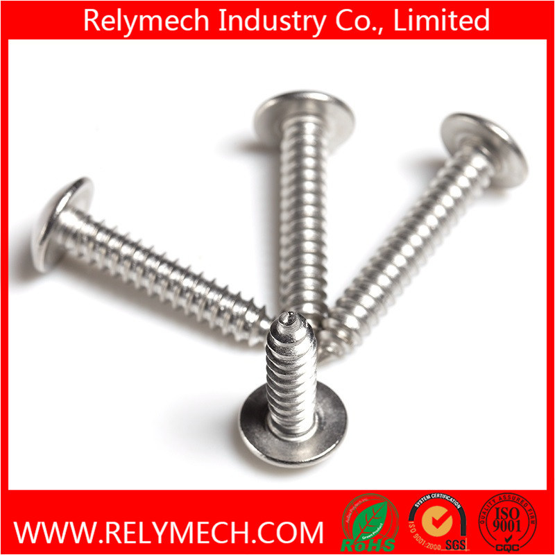 Phillips Truss Head Self-Tapping Screw in Stainless Steel 304