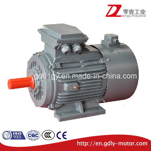 Variable Speed Three Phase Induction Motor