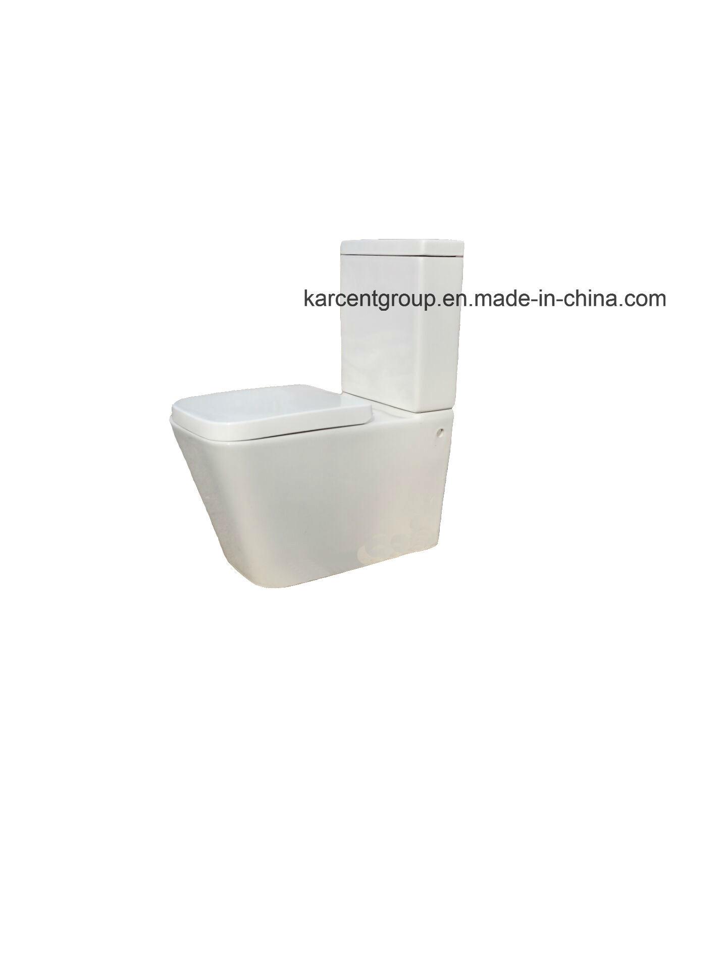 Two Piece Ceramic Toilet Washdown Toilet Water Closet Wc 10100b