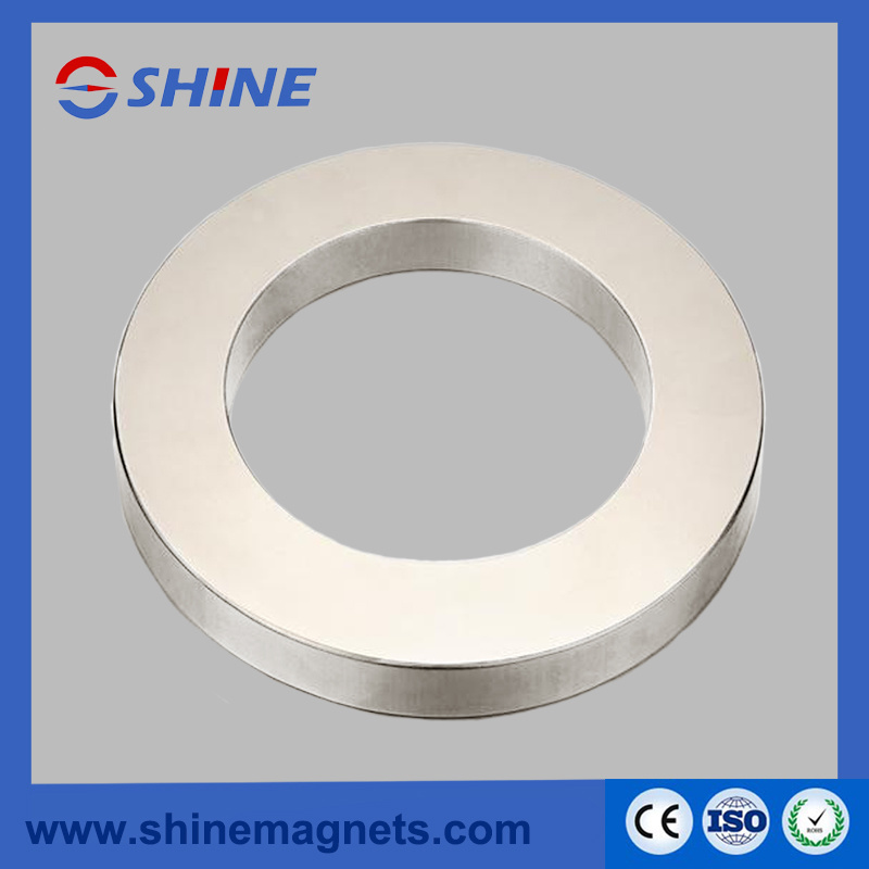 Excellent Quality Various Shapes of NdFeB Magnets/Magnet
