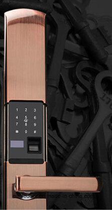 Fingerprint Door Lock with Cover (EFL-620C)