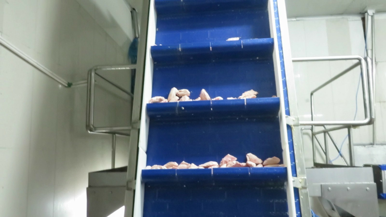 Fj-a-500g Food Poultry Sea-Fish Weight Sorter Checkweigher