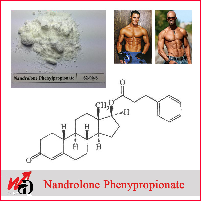 99% Purity Anabolic Steroid Powder Nandrolone Decanoate Steroids