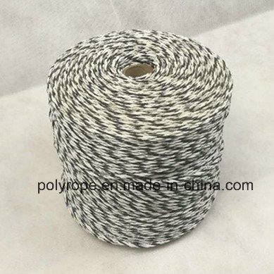 China Manufacturer Polyrope for Electric Fence