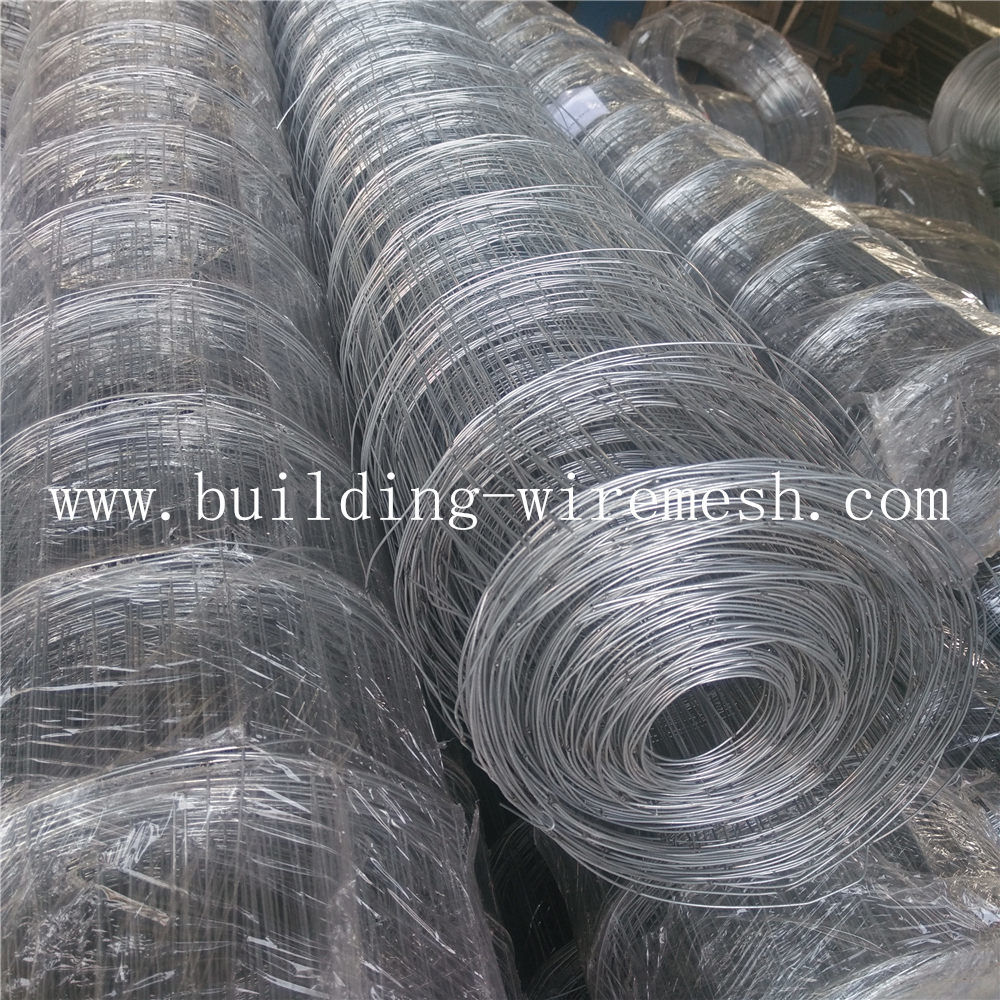 Welded After Galvanized Welded Wire Mesh