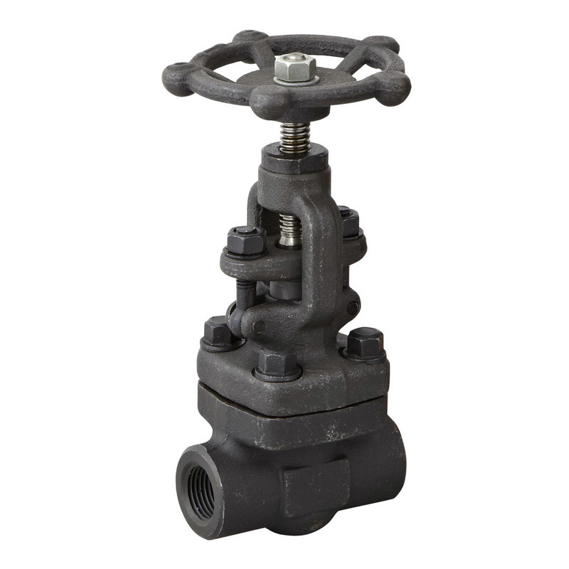 Stainless Steel Pressure Reducing Globe Valve