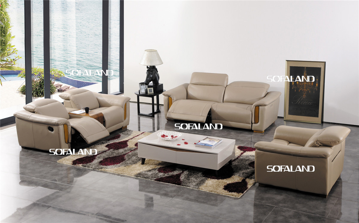 China Modern Living Room Furniture Leather Sofa Set 422 Photos Pictur
