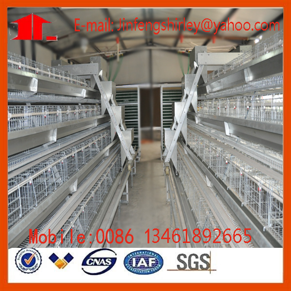 Chicken Layer/Broiler/Pullet Battery Cage
