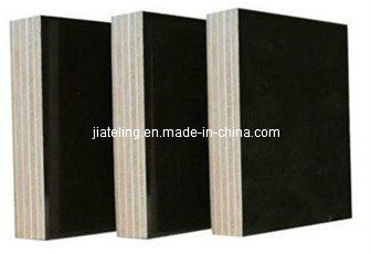 Film Faced Plywood/Construction Plywood