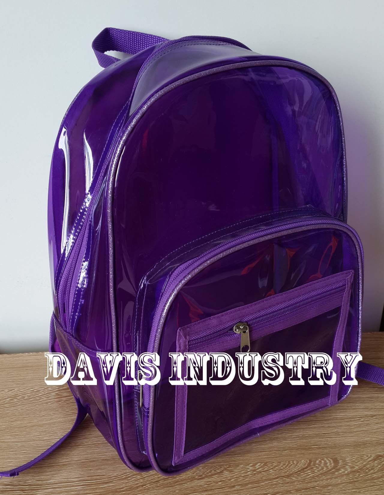 Most Popular Transparent School Backpack