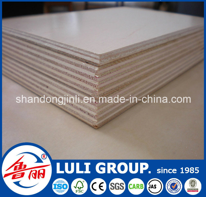 UV Birch Plywood From Luli Group